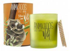 Ambientair Свеча ароматическая (9.9 см) Wild Koala Бальзамические листья VV040BLAW