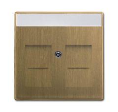 Лицевая панель ABB Dynasty розетки коммуникационной с полем для надписи шторками латунь античная 2CKA001710A4085