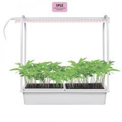 Светодиодный светильник для растений Uniel Minigarden ULT-P54-10W/SPLE IP20 White UL-00007145