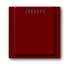 Лицевая панель ABB Impuls усилителя мощности терморегулятора ежевика 2CKA006599A2933