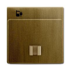 Лицевая панель ABB Dynasty розетки USB латунь античная 2CKA006400A0036