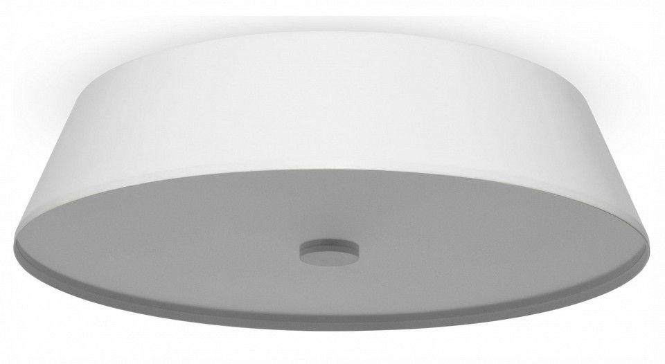 Накладной светильник Freya LED FR10013CL-L24W
