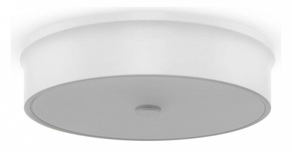 Накладной светильник Freya LED FR10011CL-L24W